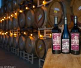 Turning Rocks Into Wine at Dusted Valley